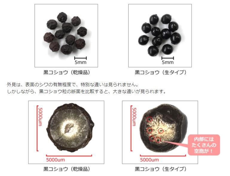粒こしょう生タイプと黒コショウ乾燥品も違い
