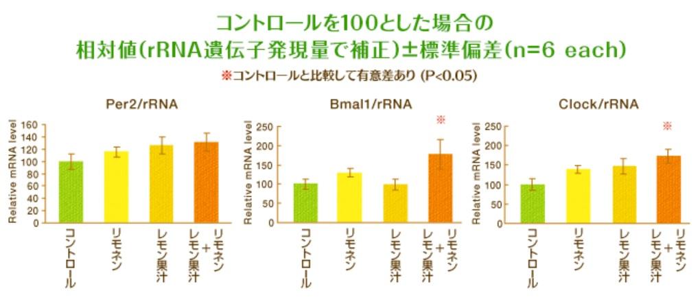 体内時計遺伝子研究結果